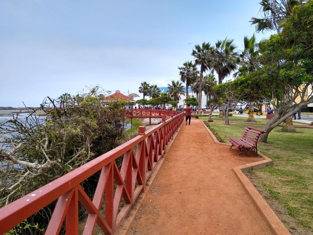 limpieza de playas (5)
